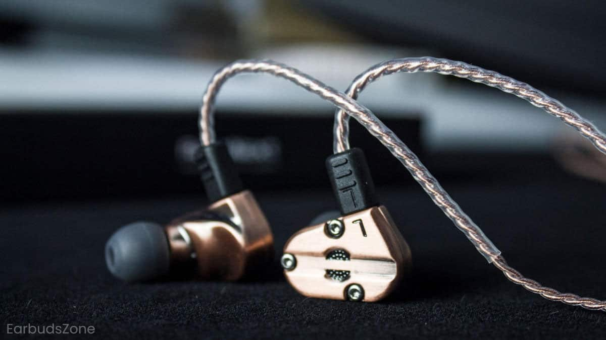 IEM Earbuds Tips
